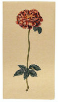Botanical Rose tapestry - French wall tapestries on sale