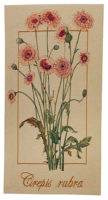 Crepis Rubra tapestry - French wall tapestries for sale