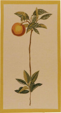 Orange wall tapestry - contemporary fruits tapestries