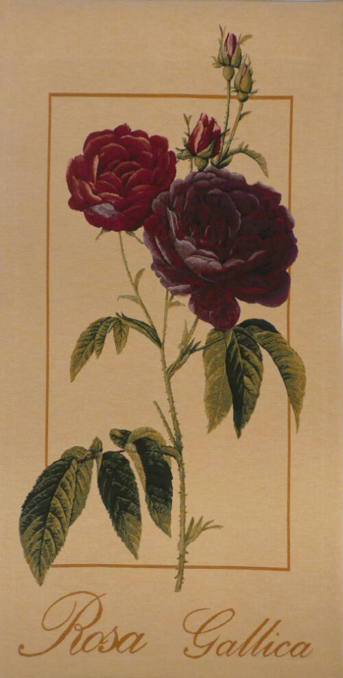 Rosa Gallica tapestry - French floral tapestries - Pierre-Joseph Redoute
