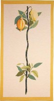 Lemon tapestry wallhanging - botanical tapestries