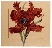 Tulipa square tapestry - Tulipa Munstrosa by Redoute