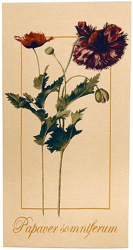 Papaver Somniferum tapestry - French botanical tapestries