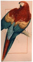 Red Parrot tapestry - woven in France
