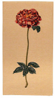Botanical Rose tapestry - French wall tapestries