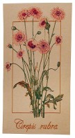 Crepis Rubra tapestry - French wall tapestries