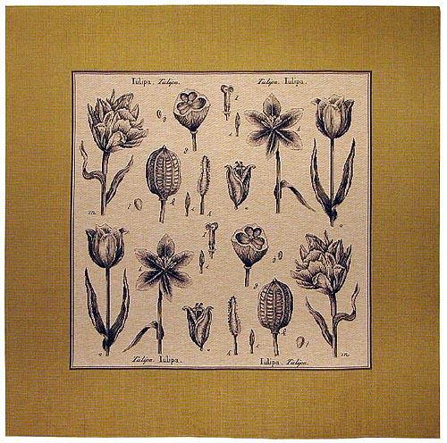 Contemporary tablecloths
