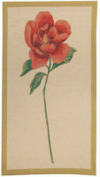 Camellia tapestry - French botanical wall tapestries